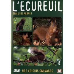 L'écureuil - Génie des arbres