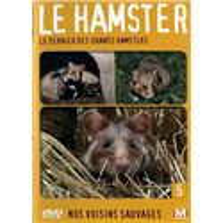 Le hamster - Le dernier des grands hamsters